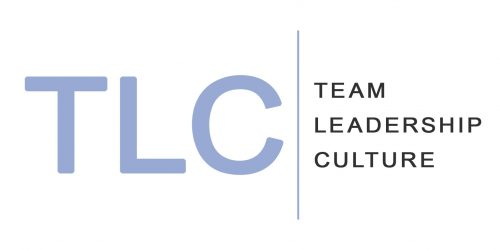 Team Leadership Culture